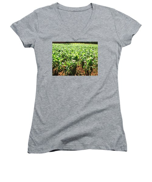 Women's V-Neck T-Shirt (Junior Cut) featuring the photograph Corn Island by Beto Machado