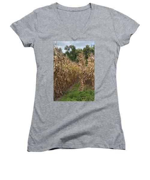 Cornstalks Women's V-Neck T-Shirt (Junior Cut) by Arlene Carmel
