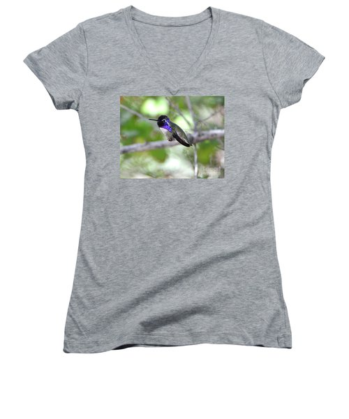 Costa's Hummingbird Women's V-Neck T-Shirt