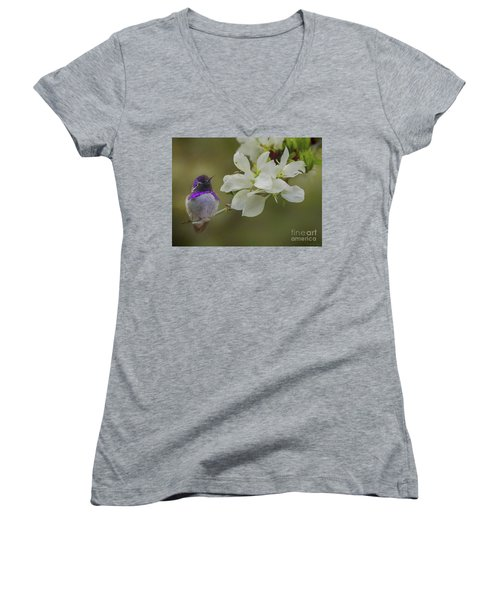 Costas Hummingbird On An Anacacho Orchid Branch Women's V-Neck (Athletic Fit)