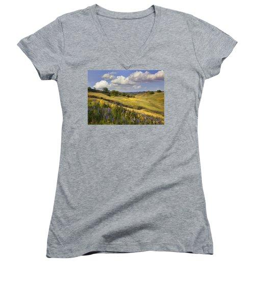 Cottonwood Canyon Women's V-Neck T-Shirt