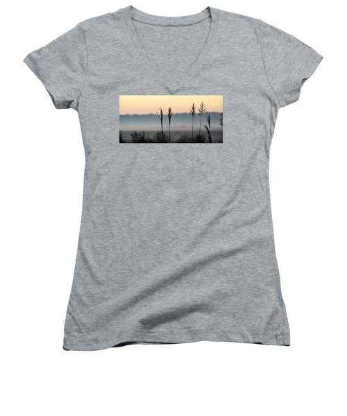 Hayseed Johnny Women's V-Neck T-Shirt