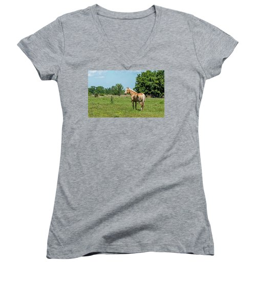 Country Life Women's V-Neck (Athletic Fit)