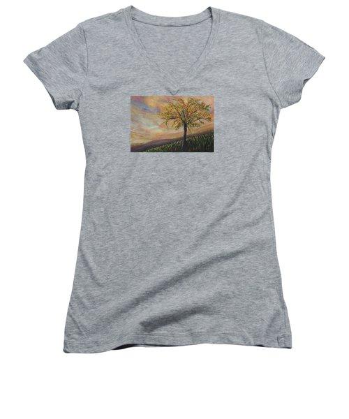 Country Morn Women's V-Neck T-Shirt (Junior Cut) by Roberta Rotunda
