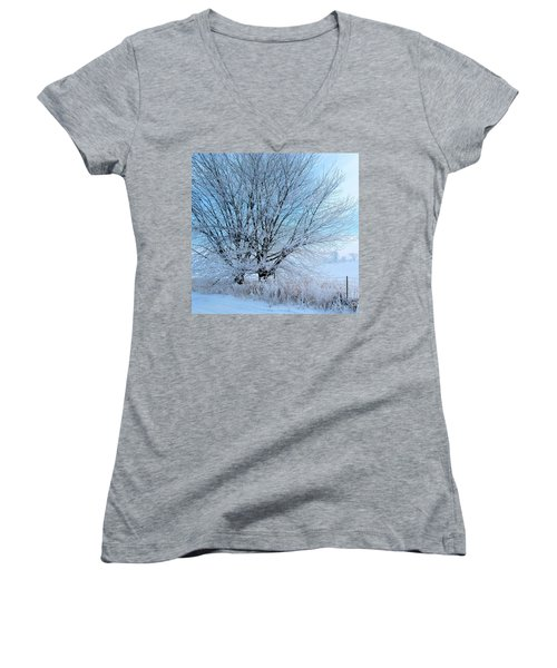 Women's V-Neck T-Shirt (Junior Cut) featuring the photograph Covered In Ice by Heather King