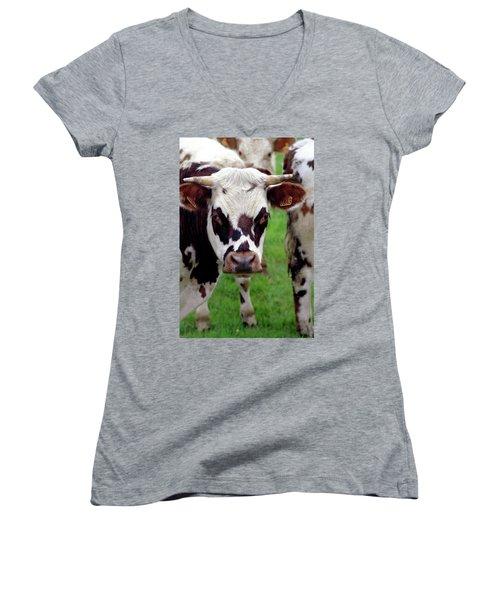 Cow Closeup Women's V-Neck (Athletic Fit)