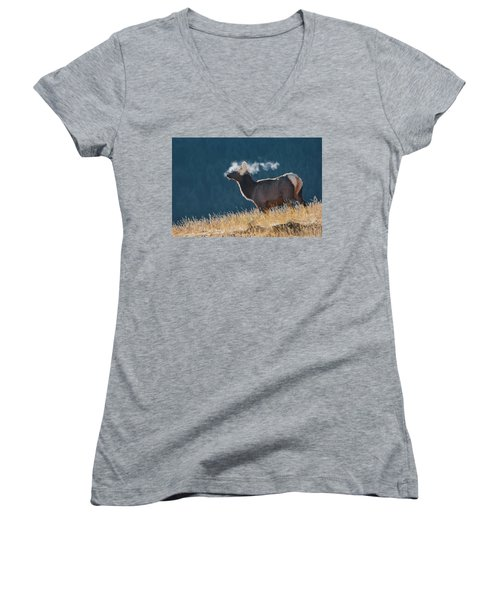 Cow Elk With Steamy Breath Women's V-Neck