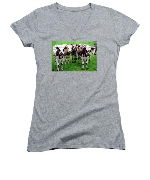 Cow Group Women's V-Neck