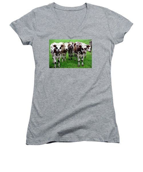 Cow Group Women's V-Neck