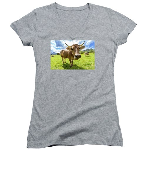 Women's V-Neck T-Shirt (Junior Cut) featuring the photograph Cow In Meadow by MGL Meiklejohn Graphics Licensing