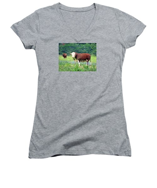 Cow Today Women's V-Neck (Athletic Fit)