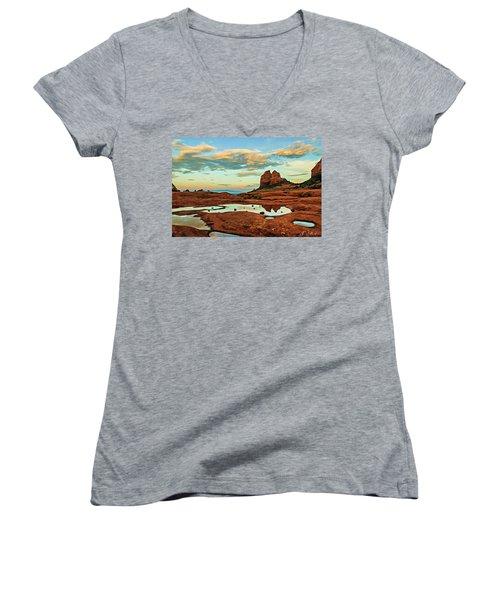 Cowpie 07-059 Women's V-Neck T-Shirt (Junior Cut) by Scott McAllister