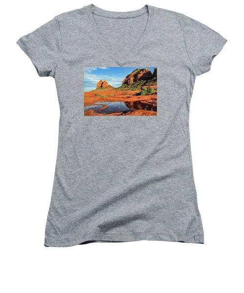 Cowpie 07-101 Women's V-Neck T-Shirt (Junior Cut) by Scott McAllister