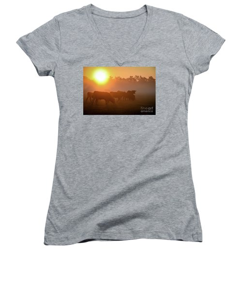 Cows In The Sunrise Mist Women's V-Neck (Athletic Fit)
