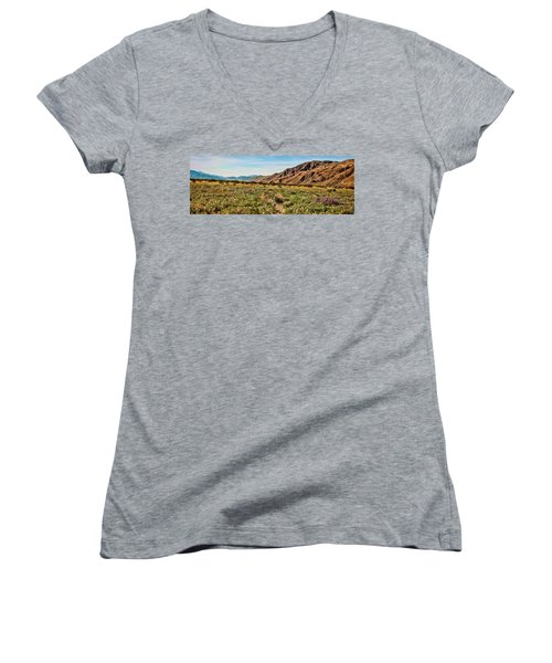 Coyote Canyon Meadow View Women's V-Neck T-Shirt (Junior Cut)