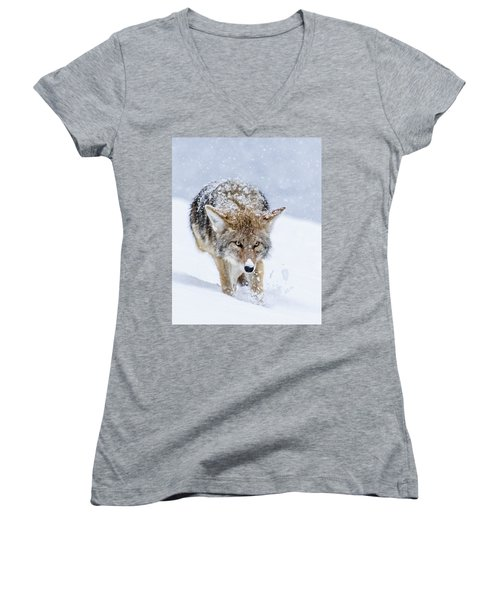 Coyote Coming Through Women's V-Neck T-Shirt