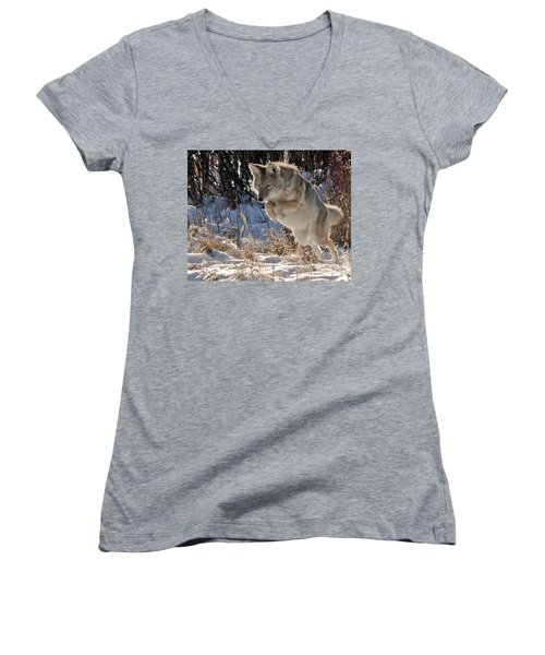 Coyote In Mid Jump Women's V-Neck T-Shirt