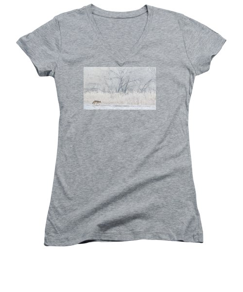 Coyote On The Hunt Women's V-Neck (Athletic Fit)