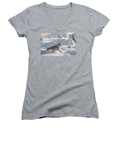 Coyote On The Move Women's V-Neck (Athletic Fit)