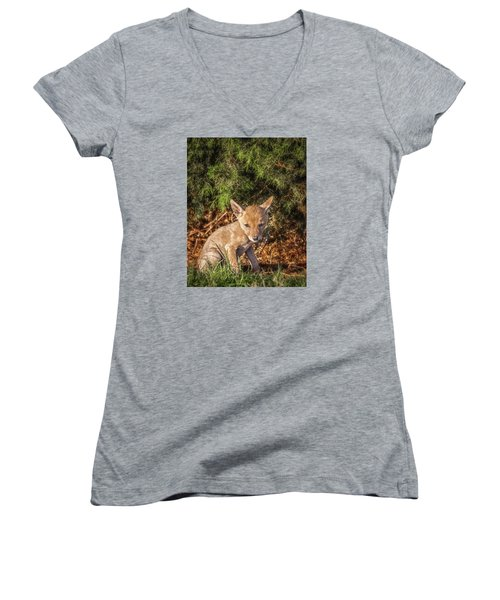 Coyote Pup Women's V-Neck T-Shirt