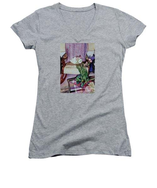 Cozy Kitty Women's V-Neck T-Shirt