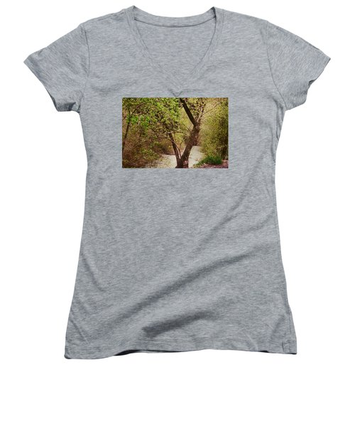Cozy Stream In American Fork Canyon Utah Women's V-Neck (Athletic Fit)