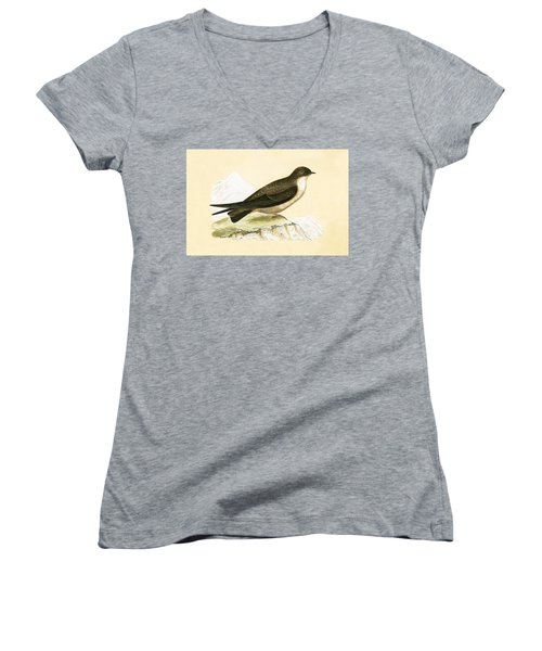 Crag Swallow Women's V-Neck T-Shirt (Junior Cut) by English School