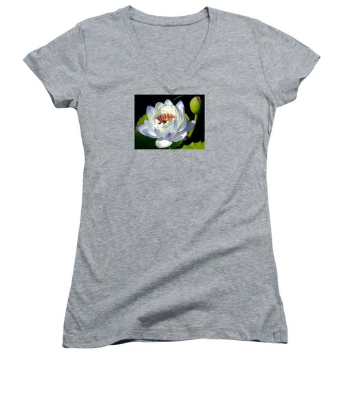 Women's V-Neck T-Shirt (Junior Cut) featuring the photograph Creation by Brenda Pressnall