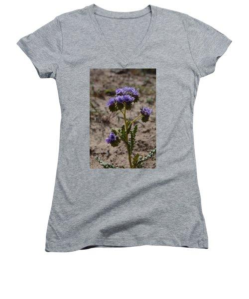 Women's V-Neck T-Shirt (Junior Cut) featuring the photograph Crenulate Phacelia Flower by Jenessa Rahn