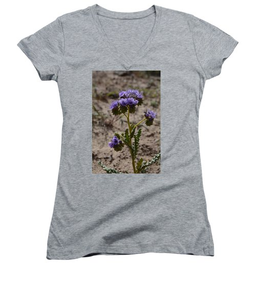 Crenulate Phacelia Flower Women's V-Neck (Athletic Fit)