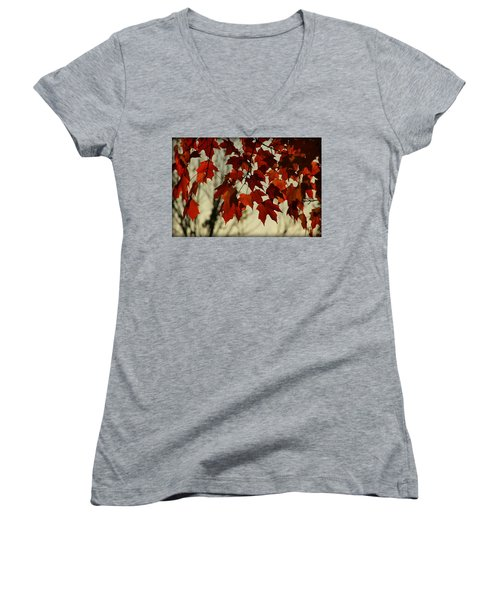 Women's V-Neck T-Shirt (Junior Cut) featuring the photograph Crimson Red Autumn Leaves by Chris Berry