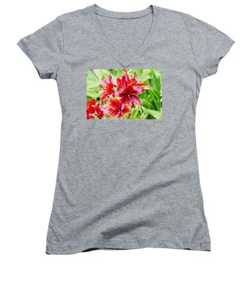 Crimson Lilies Women's V-Neck T-Shirt