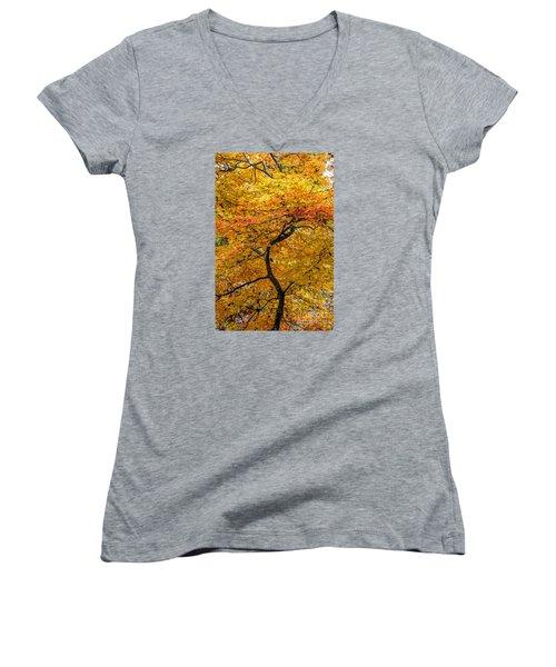 Crooked Tree Trunk Women's V-Neck T-Shirt