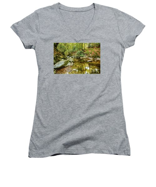 Crough Wood 1 Women's V-Neck T-Shirt