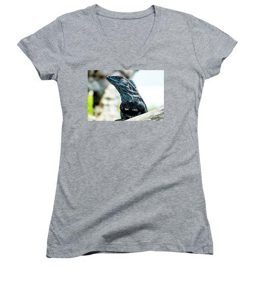 Women's V-Neck T-Shirt featuring the photograph Ctenosaura by David Morefield