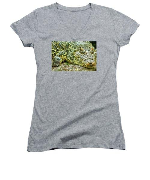 Cuban Croc Women's V-Neck T-Shirt (Junior Cut) by Josy Cue