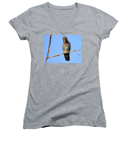 Curious Women's V-Neck T-Shirt