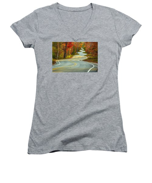 Curvaceous Women's V-Neck T-Shirt (Junior Cut) by Bill Pevlor