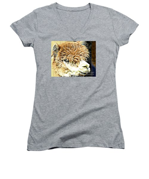 Soft And Shaggy Women's V-Neck T-Shirt (Junior Cut) by Kathy M Krause
