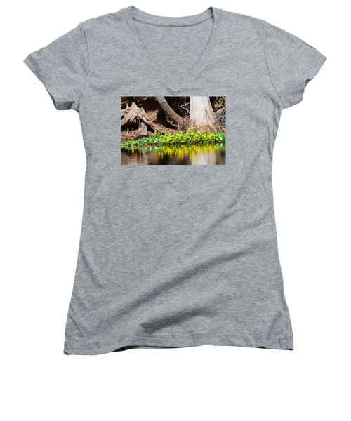 Cypress And Flower Reflections Women's V-Neck T-Shirt (Junior Cut) by Warren Thompson