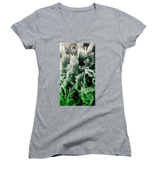 Cypress Branches No.5 Women's V-Neck T-Shirt