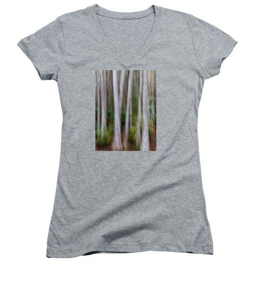 Cypress Swamp Women's V-Neck T-Shirt