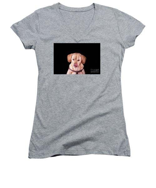 Dachshund Mix Licking Lips Women's V-Neck T-Shirt (Junior Cut) by Stephanie Hayes