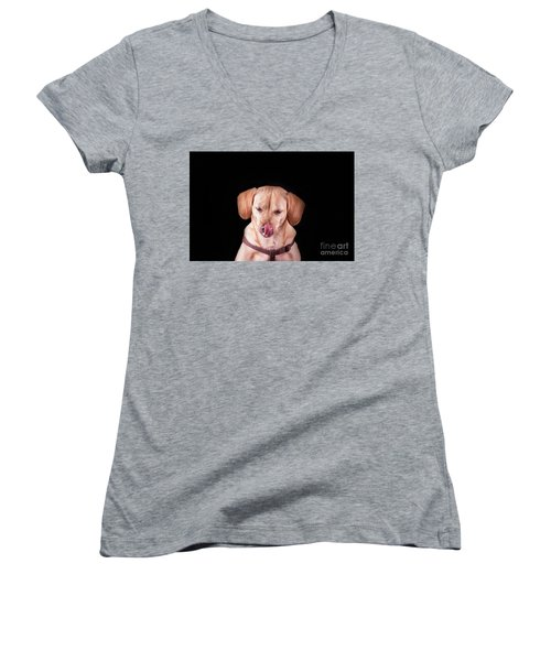 Dachshund Mix Licking Lips Women's V-Neck T-Shirt