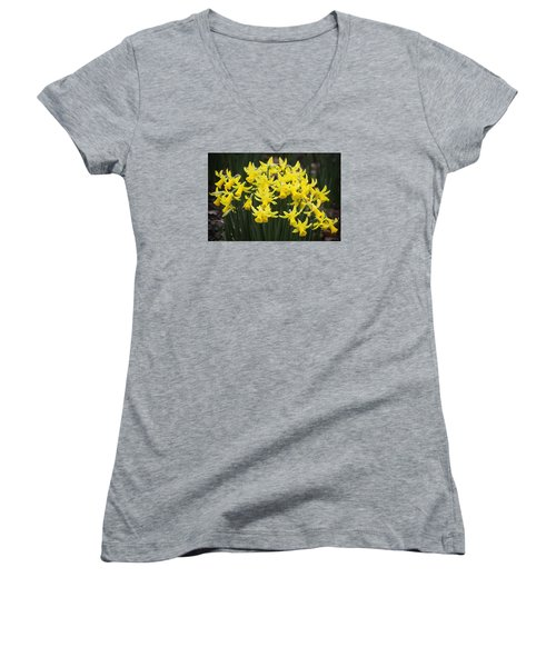 Daffodil Yellow Women's V-Neck T-Shirt (Junior Cut) by Shirley Mitchell