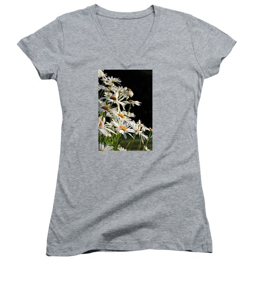 Daisies Women's V-Neck T-Shirt (Junior Cut) by Dorothy Cunningham