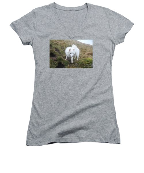 Women's V-Neck T-Shirt (Junior Cut) featuring the photograph Daisy - Japanees Spits by David Grant