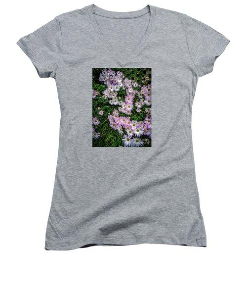 Daisy Patch Women's V-Neck T-Shirt (Junior Cut) by David Smith
