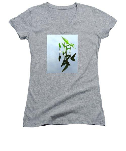 Damselfly In The Mirror Women's V-Neck T-Shirt