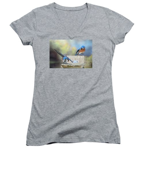 Dancing Bluebirds Women's V-Neck (Athletic Fit)